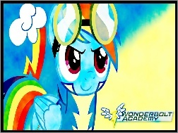 Wonderbolts Academy, My Little Pony, Rainbow Dash