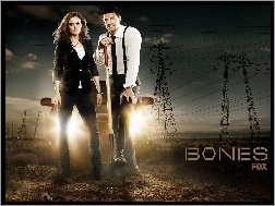 David Boreanaz, Kości, Bones, Serial, Emily Deschanel