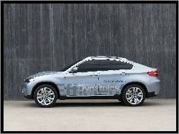 Efficient, BMW X6, Dynamics