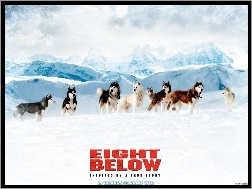 Antarktyda, Eight Below