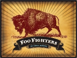 Foo Fighters, baran