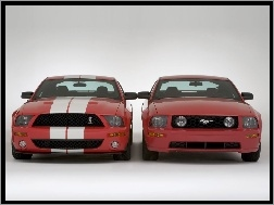 Ford Mustang i GT500