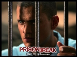 kraty, Prison Break, Wentworth Miller