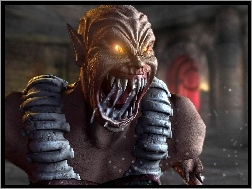 Mortal Kombat Deception, Baraka