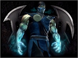Mortal Kombat: Deadly Alliance, Sub-Zero