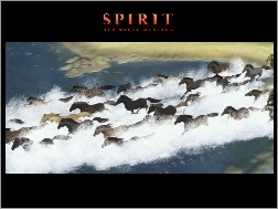 Spirit Stallion of the Cimarron, Film animowany, Mustang z Dzikiej Doliny