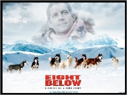 Paul Walker, góry, psy, Eight Below