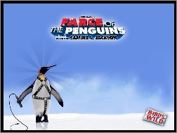 pejcz, Farce Of The Penguins, pingwin