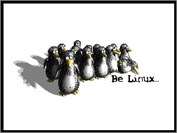 Pingwinów, Linux, System, Gromadka