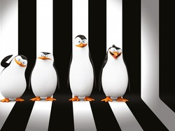 Postacie, Pingwiny z Madagaskaru, The Penguins of Madagascar