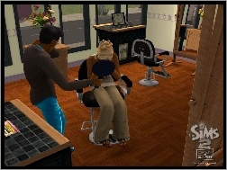 The Sims 2, Open Business