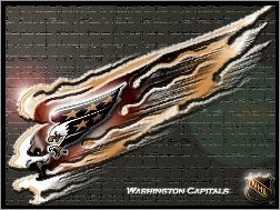 Washington Capitals, Drużyny, Logo, NHL