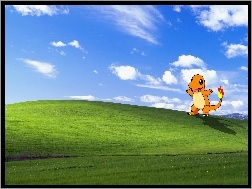 Pokemon, Windows, XP