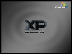 XP, Professional