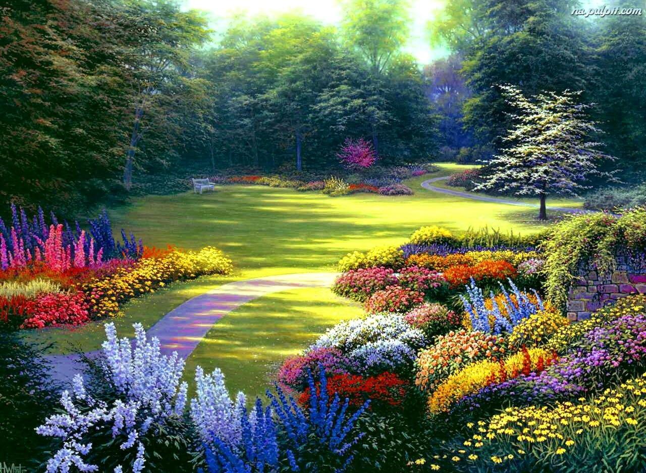 Alejka Kolorowe Ogrod Kwiaty Na Pulpit