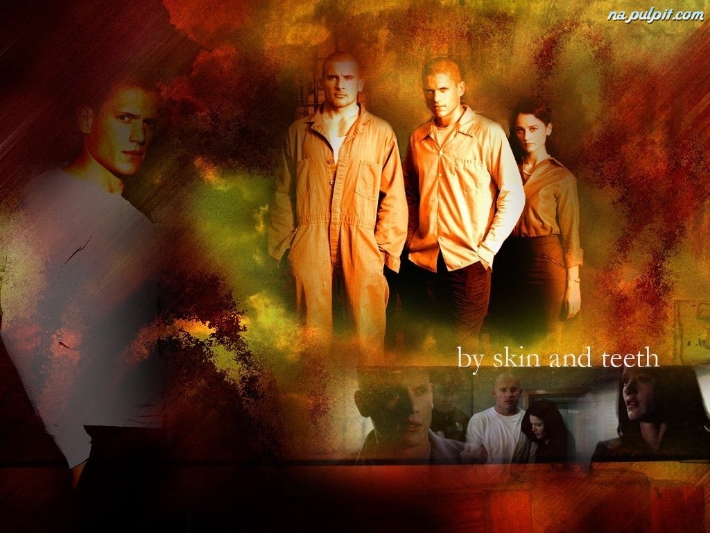 więzień, Wentworth Miller, Robin Tunney, Prison Break, Dominic Purcell