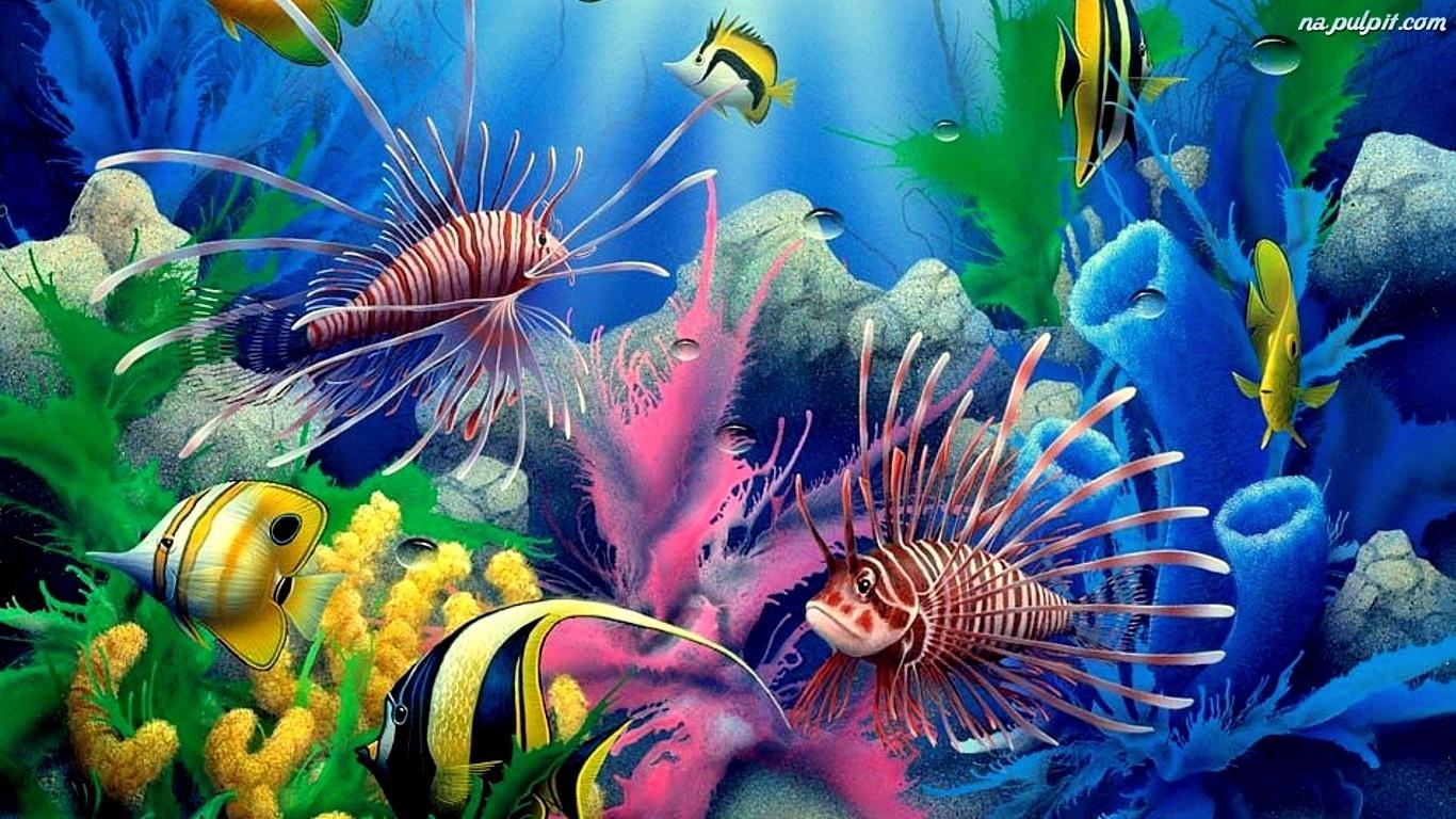 Ryby Akwarium Na Pulpit
