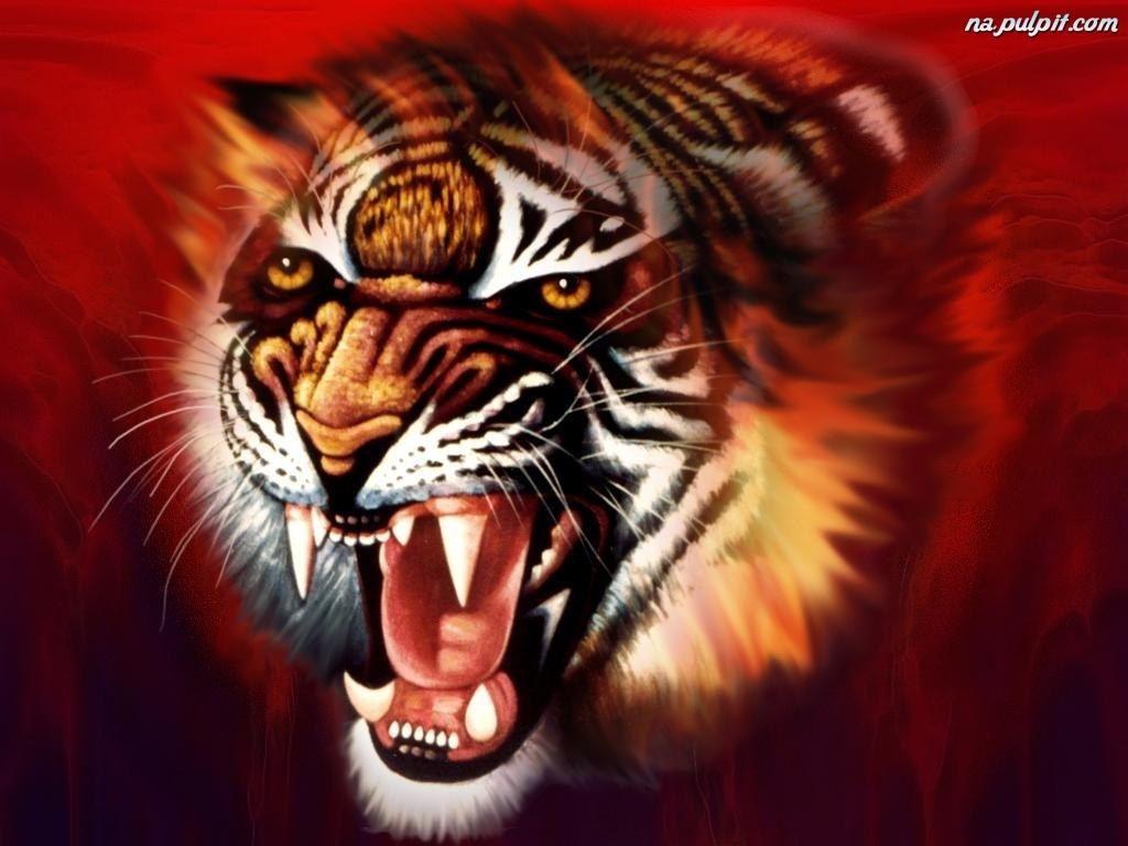 Obraz Tygrys Kły Na Pulpit