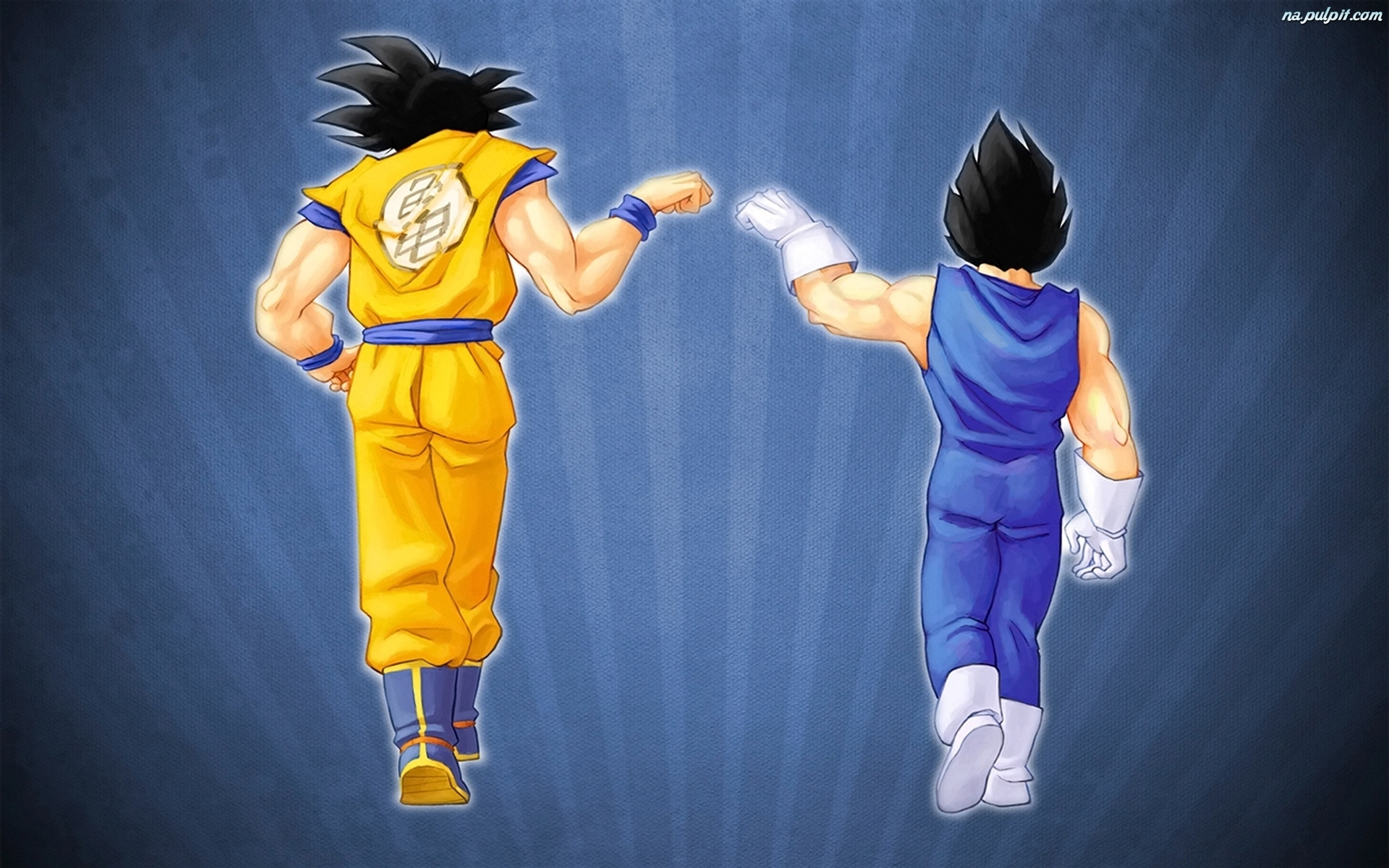 Vegeta, Dragon Ball Z, Son Goku